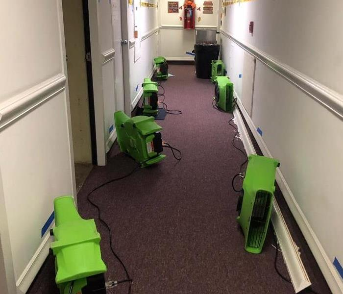 Clean hallway with green air movers on the floor.