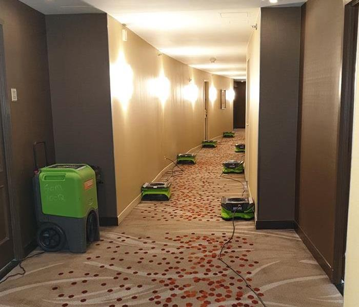 Hotel hallways with seven green air movers.