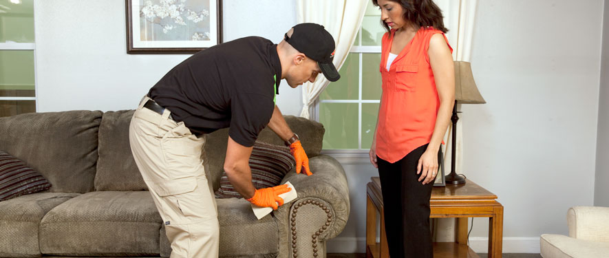Oakville, MO carpet upholstery cleaning